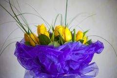 Abstract beautiful gentle spring flower background. Tulip flower Stock Photo