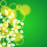 Abstract beautiful green floral background Stock Image