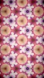 Abstract Beautify Flower bokeh pattern background. Stock Images