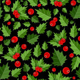 Abstract Beauty Christmas Berry Seamless Pattern Royalty Free Stock Photos