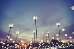 Abstract beeld, onduidelijk beeldlicht bokeh met voordeelkleurentoon met zonsondergangogenblik Stock Foto's