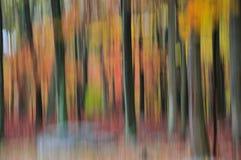Abstract beeld van een bos in volledige dalingskleuren Stock Foto