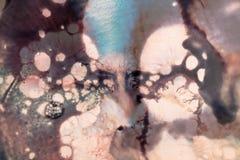 Abstract beeld van kleurrijke vuile plons Stock Foto