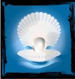Abstract beeld van shell Royalty-vrije Stock Foto's