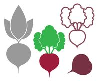 Abstract Beet. Outline. Silhouette. Icon Royalty Free Stock Photo