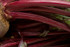 Abstract Beetroot Stock Images