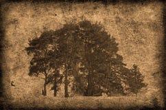 Abstract behang Stock Foto