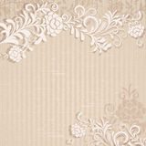 Abstract beige background Royalty Free Stock Photos