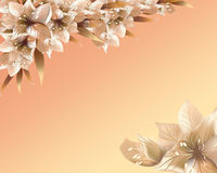 Abstract beige floral background  . Royalty Free Stock Photography