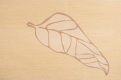 Abstract beige leaf background Stock Photo