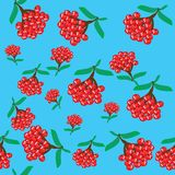 Abstract berry seamless Royalty Free Stock Images