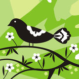 Abstract bird and flowers. Green, black and white design with bird and flowers Royalty Free Stock Photos