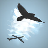 Abstract bird and shadow. Abstract silhouette bird and airplane shadow design Stock Images