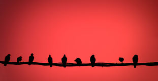 Abstract: bird on a wire Royalty Free Stock Photo