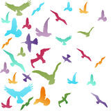 Abstract birds background Royalty Free Stock Photography