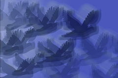 Abstract of Birds in Flight Royalty Free Stock Photo