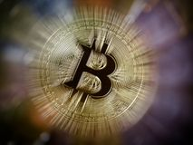 Bitcoin gold coin Royalty Free Stock Images