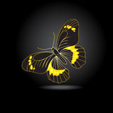 Abstract black and gold butterfly Stock Photography