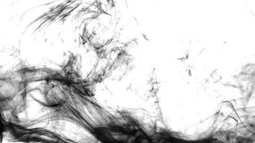 Abstract black ink in water on white background stock video
