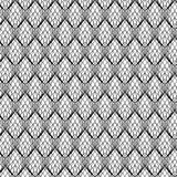 Abstract Black Line Lace Pattern, vector Stock Image