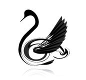Abstract  black swan Royalty Free Stock Photography