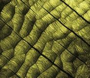 Abstract black texture grid Stock Photos