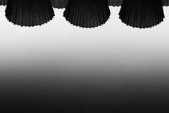 The abstract black and white background. Stock Image