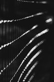 Abstract black and white on a fence Stock Image