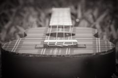 Abstract black and white image close up of musical instrument ukulele guitar on green grass. Selective focus Royalty Free Stock Photography