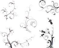 Abstract bloemenelement voor ontwerp Stock Foto's