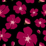 Abstract Bloemensakura flower japanese natural seamless-Patroon Stock Foto