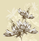 Abstract blooming flowers flying dragonflies, hand Stock Photos