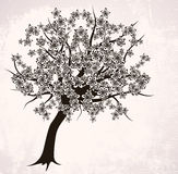 Abstract blossoming tree. On pink backdrop, format Royalty Free Illustration
