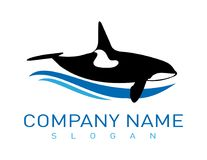 Abstract whale logo on white background. Abstract blue and black whale logo  on a white background Royalty Free Stock Photography