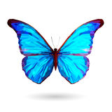 Abstract blue butterfly – Illustration. Blue butterfly with polygonal crystal texture. Vector Illustration Eps 10. Hihg res jpg included vector illustration