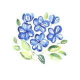 Abstract blue color floral elements. Watercolor hand drawn illustration royalty free illustration