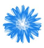 Abstract blue 3d flower isolated on white background. Flower pattern design element Stock Photo