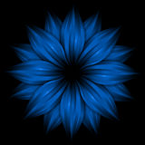 Abstract blue flower on black background Royalty Free Stock Photo