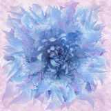 Abstract blue flower in watercolor style. Floral blue-pink background. For design, texture, cover, postcard. Nature Stock Photos