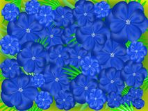Abstract blue flowers Royalty Free Stock Photography