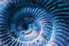 Abstract blue spiral Stock Photos