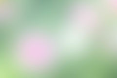 The abstract blur background pink and green color texture Royalty Free Stock Photo