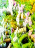 Abstract blur background and soft nature Stock Photo