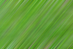 Abstract Blur Background. Using picture to do Royalty Free Stock Photo