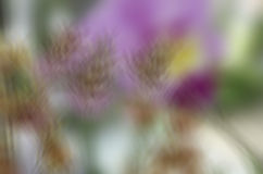 Abstract blur background for webdesign, colorful background, blurred, wallpaper Royalty Free Stock Photo