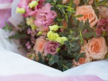 Abstract blur flowers roses background, greeting card. Abstract blur flowers roses background, copy space stock photo