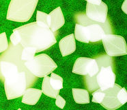 Abstract blur leaf background. Abstract blur leaf on green background stock illustration