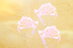 Abstract blur rose on yellow cement Stock Photography