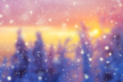 Abstract blur winter background in sunset Stock Image