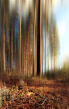 Abstract blurred autumn landscape brown color Stock Photos